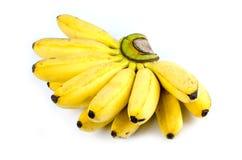 Banana Fotografie Stock