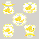 The banana. Abstract vector illustration logo for whole ripe fruit yellow banana with green stem leaf cut sliced.Banana drawing consisting of tag label bow peel Royalty Free Stock Images