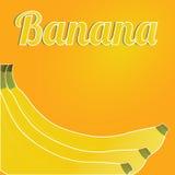 Banana. Big banana on special orange background Stock Photo