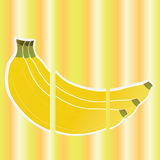 Banana. Big banana on special yellow lines background Royalty Free Stock Photography