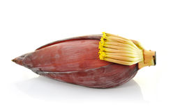 Banana blossom Stock Photos