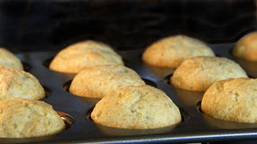 Banana bread muffins baking in a convection oven. Golden brown a. Lmost done Royalty Free Stock Image