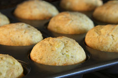 Banana bread muffins baking in a convection oven. Golden brown a. Lmost done Stock Images