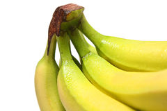 Banana Bunch. Close-up of fresh ripe bananas with dew droplets on white background Stock Photography
