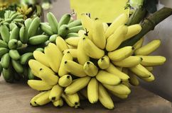 Banana. Bunch of bananas in the exhibition of agricultural farmers annual Royalty Free Stock Image