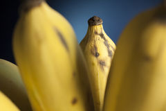 Banana in bunch Royalty Free Stock Images