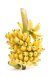 Banana bunch cluster Stock Photos