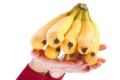 Banana bunch diet eating exotic food Royalty Free Stock Photo