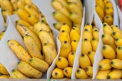 Banana bunch group on farmer market Stock Photography
