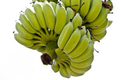 Banana Bunch isolate on white Royalty Free Stock Photo