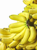 Banana bunch. In stack on white background Stock Images
