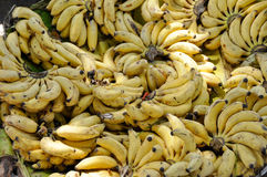 Banana bunches in a street market Royalty Free Stock Image