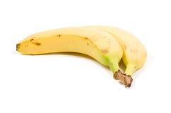 Banana bundle. Isolated on a white background stock photography