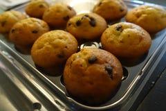 Banana chocolate chip mini muffins stock images