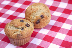 Banana Chocolate Chip Muffins. A pair of homemade banana chocolate chip muffins on a red gingham table cloth Royalty Free Stock Photography