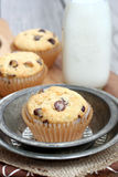 Banana Chocolate Chip Muffins Royalty Free Stock Photography