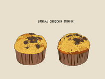 Banana Chocolate chip muffins , sketch vector. Banana Chocolate chip muffins in paper cases , sketch vector stock illustration