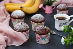 Banana-chocolate muffins in paper forms against a dark background stock photography