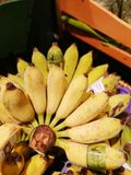 Banana close up display in supermarket stock photos