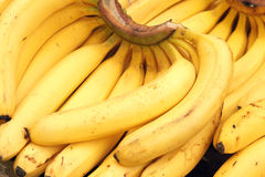 Banana. The close-up of ripe banana Stock Images