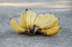 Banana. Royalty Free Stock Photo