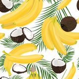 Banana, coconut, whole and pieces with palm leaves isolated on white background. Colorful botanical vector ilustration. Vintage tr Royalty Free Stock Photography
