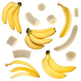 Banana collection Stock Images