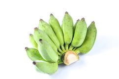 Banana coltivata cruda immagini stock