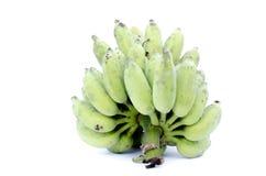 Banana coltivata su fondo bianco. Fotografie Stock
