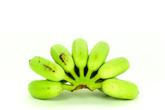Banana coltivata verde Fotografie Stock