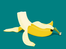 Banana comida ilustração stock
