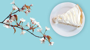 Banana cream custard pie Royalty Free Stock Image