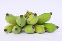 Banana cultivada Imagem de Stock Royalty Free