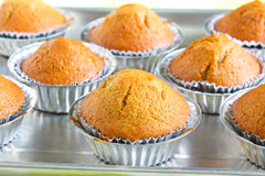 Banana cup cake. Stock Images