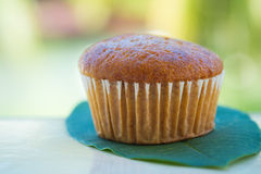 Banana cup cake Stock Photo