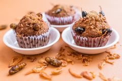 Banana cupcakes with insect. Banana cupcakes with worm insect and crispy shallots fried on orange tablecloth background. Healthy meal high protein diet royalty free stock images