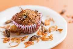 Banana cupcakes with insect royalty free stock photography