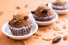 Banana cupcakes with insect stock photos