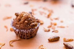 Banana cupcakes with insect foods stock photography