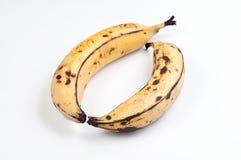 Banana-da-terra Imagem de Stock Royalty Free