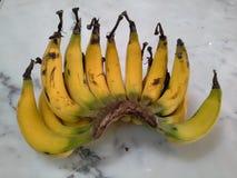 Banana de Lebmuernang, Hadyai, Songkhla, Tailândia imagens de stock