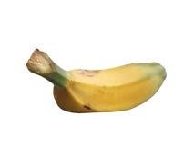 Banana de Saba sobre sobre o branco Fotos de Stock Royalty Free