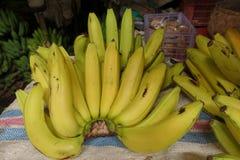 Banana del dolce di verde giallastro immagine stock libera da diritti