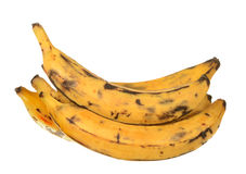 Banana del plantano Fotografia Stock Libera da Diritti