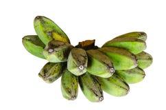 Banana del Saba Fotografia Stock Libera da Diritti