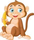 Banana della tenuta della scimmia del fumetto Fotografia Stock