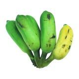 Banana di Pisang Awak isolata su fondo bianco Fotografie Stock Libere da Diritti
