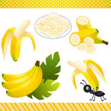 Banana Digital Clipart Royalty Free Stock Photography