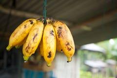 Banana display. On small streetside stall in Bali Stock Image