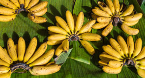 Banana do conjunto em vendas no mercado Foto de Stock Royalty Free